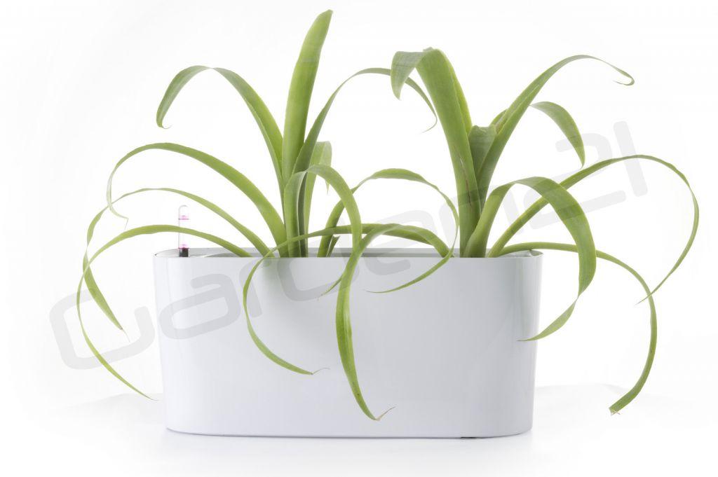 Samozavlažovací kvetináč G21 Combi mini biely 40cm