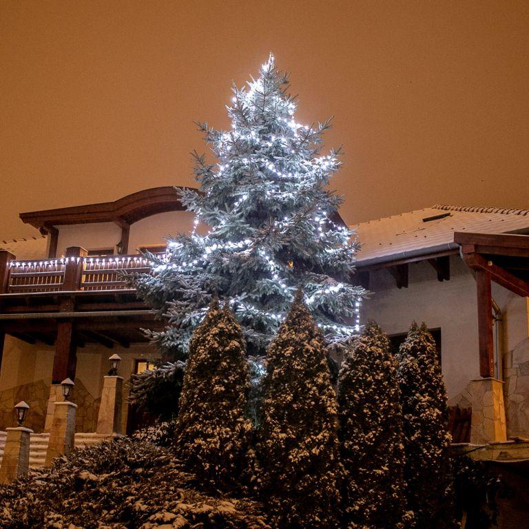 Vianočné LED osvetlenie 5 m - studená biela 50 LED + ovládač
