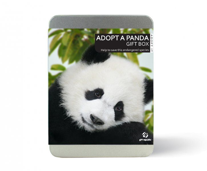 Adoptuj pandu
