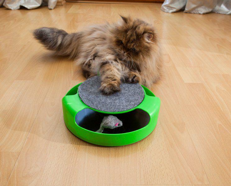 """Hračka pro kočky """"Chyť myšku"""""""
